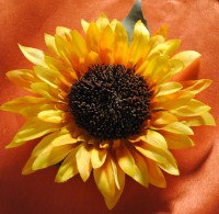 Flor Feliz Sunflower