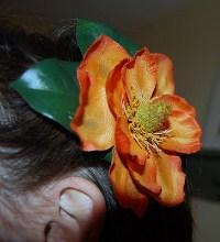 Amber Magnolia