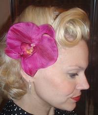 Mary Ann Orchid